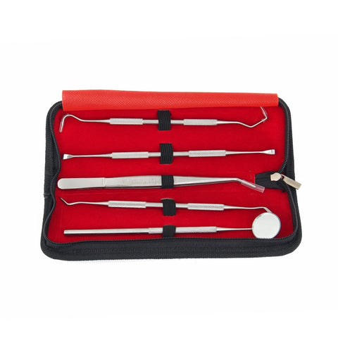 Stainless Steel Dental Calculus Tool Set
