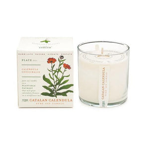 Candle: Catalan Calendula, Plant the Box Collection