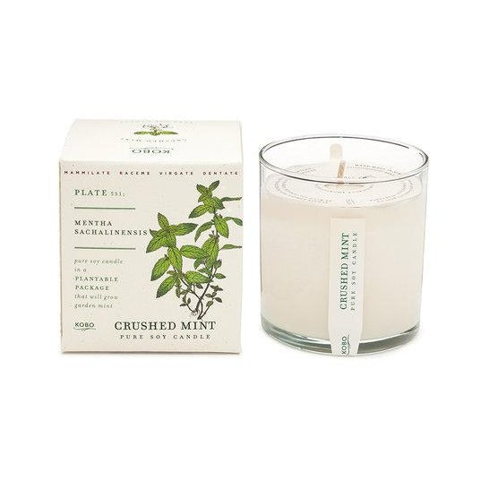 Candle: Crushed Mint, Plant the Box Collection