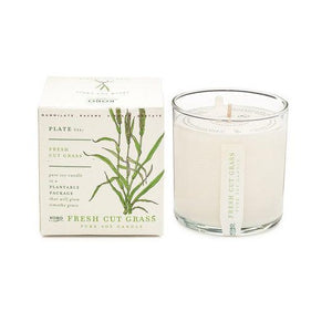 Candle: Fresh Cut Grass, Plant the Box Collection