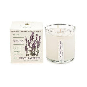 Candle: Heath Lavender, Plant the Box Collection