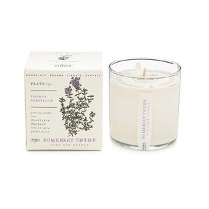 Candle: Somerset Thyme, Plant the Box Collection