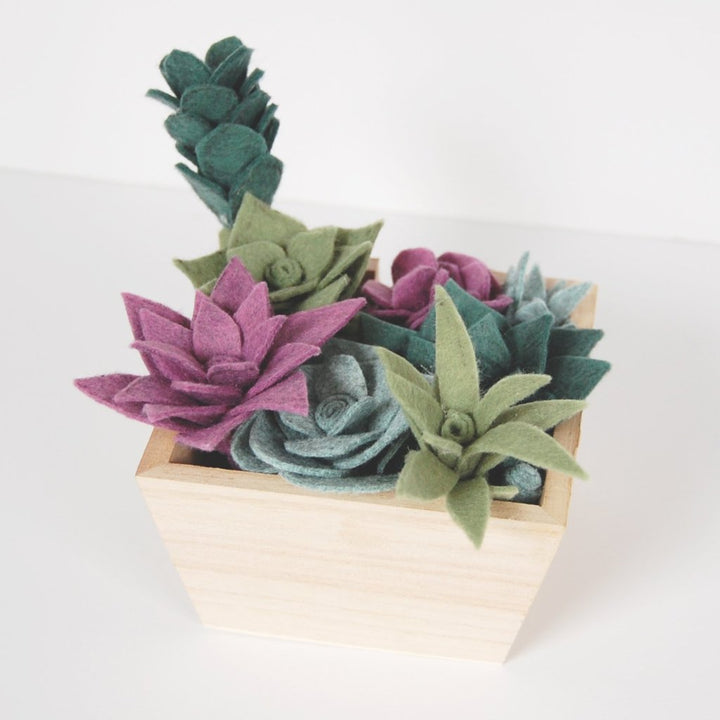 Felt Succulent Workshop: March 16, 2019 at 12:00PM
