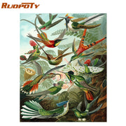 RUOPOTY Frame Diy Painting By Numbers Butterfly Animals Modern Wall Art Canvas Painting Acrylic Paint By Numbers For Home Decors