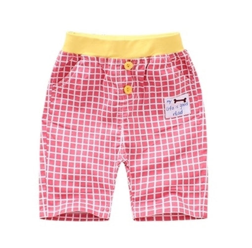 Pink & White Checked Shorts
