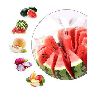 (50% OFF) Stainless Steel Fruit Slicer