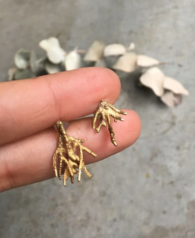 Cypress Branch Earrings in Brass - Title - Earrings