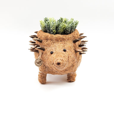 hedgehog planter pot - decor