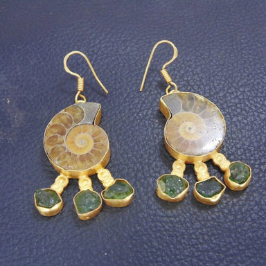 Natural Ammonite Gemstone Fossil Earrings - Earrings