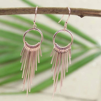 Silver Dangle Earrings - Earrings