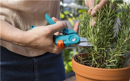 city Balcony Secateurs - GARDENA (NEW) - ClickLeaf