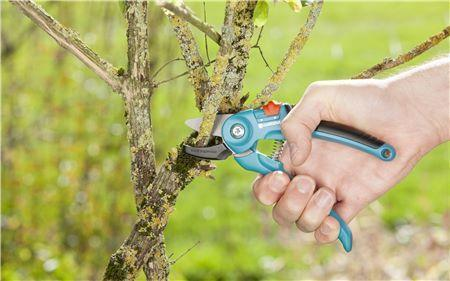 Garden Secateurs A/S - GARDENA - ClickLeaf