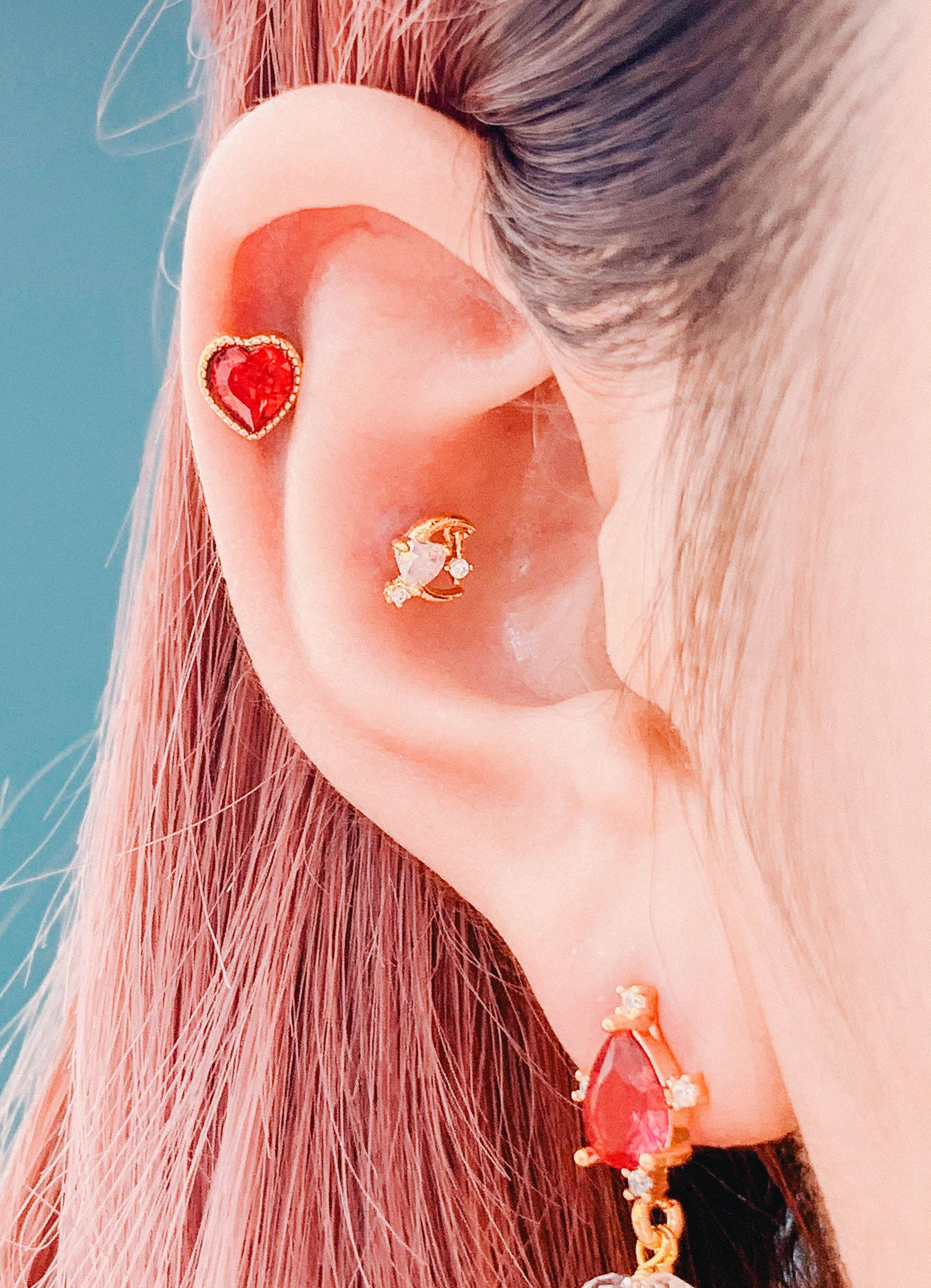 Red Land (ピアス/ピアッシング) Piercing anything else