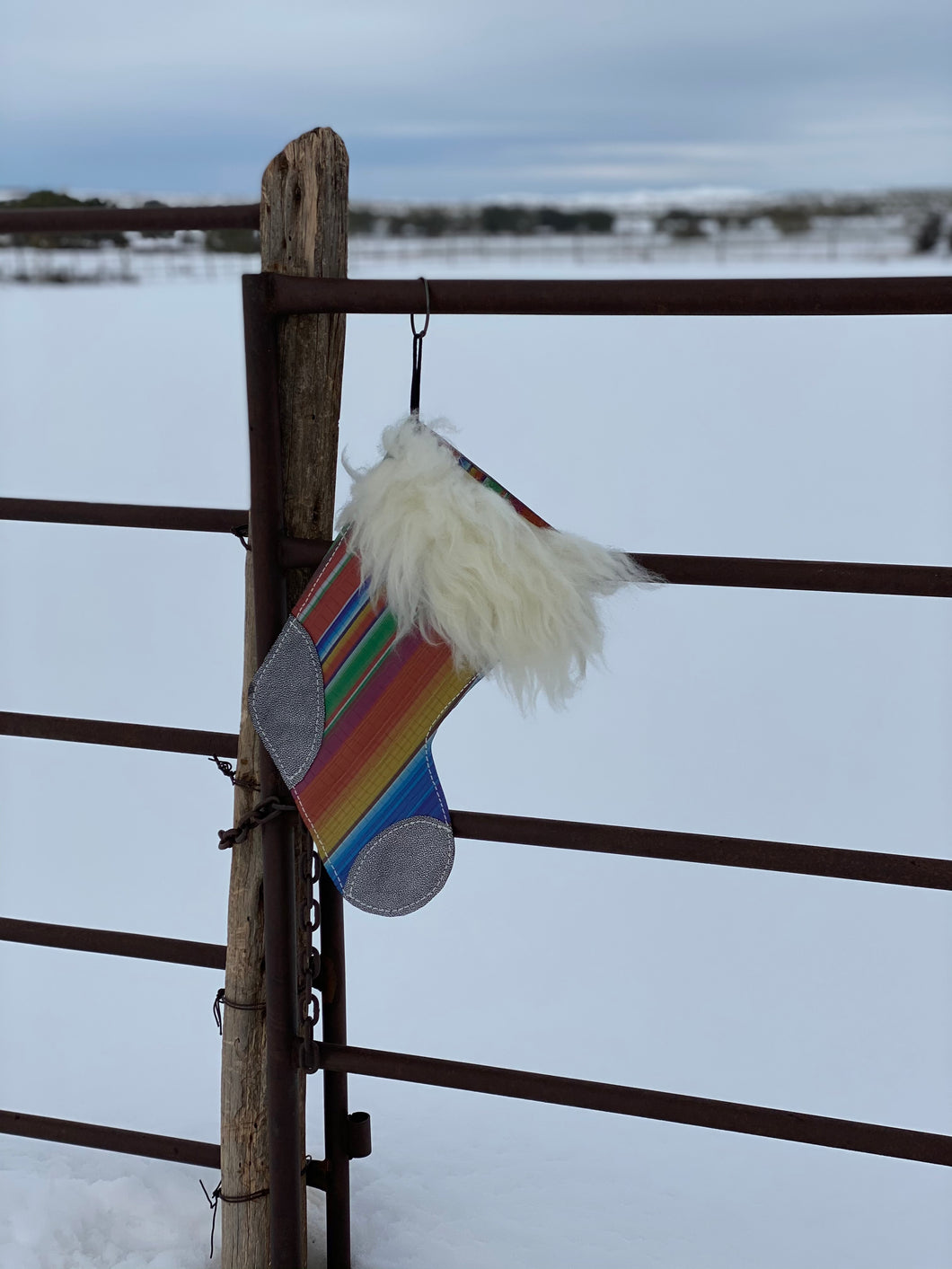 Serape and Shiny Black Stocking