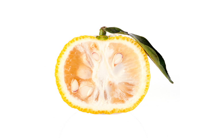 Deep Dive Into The Ingredient: Yuzu