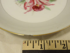 Noritake 5049 Vintage Tea Cup & Saucer Chipped 5 1/2in x 5 1/2in x 3in China Gold Rim -- Used