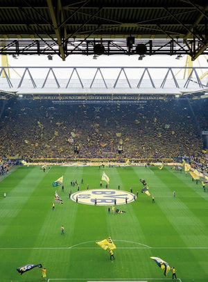 Wizard+Genius BVB Fan Choreo Vlies Fototapete 192x260cm 4-bahnen | Yourdecoration.de