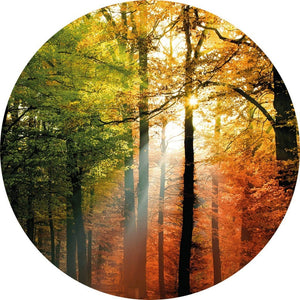 Wizard+Genius Golden Autumn Vlies Fototapete 140x140cm rund | Yourdecoration.de