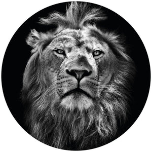 Wizard+Genius Lion Vlies Fototapete 140x140cm rund | Yourdecoration.de
