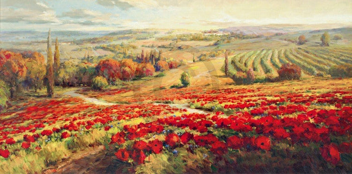 Roberto Lombardi - Red Poppy Panorama Kunstdruck 120x60cm