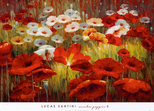 Lucas Santini - Meadow Poppies II Kunstdruck 91x66cm | Yourdecoration.de