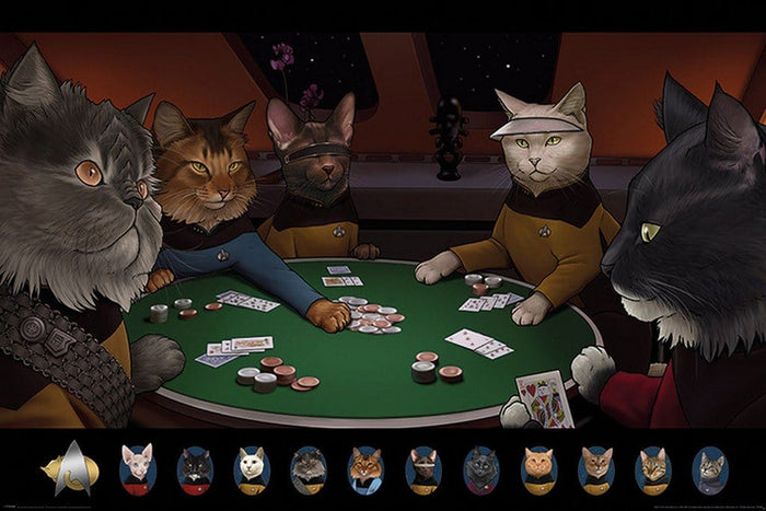 Pyramid Star Trek Cats Poker Poster 61x91,5cm