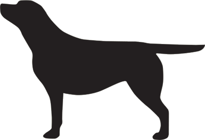 Black Labrador vehicle sticker