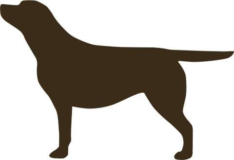 Chocolate Labrador vehicle sticker