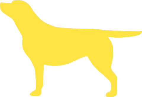 Yellow Labrador window decal