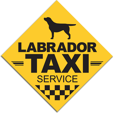Labrador taxi window sticker / decal