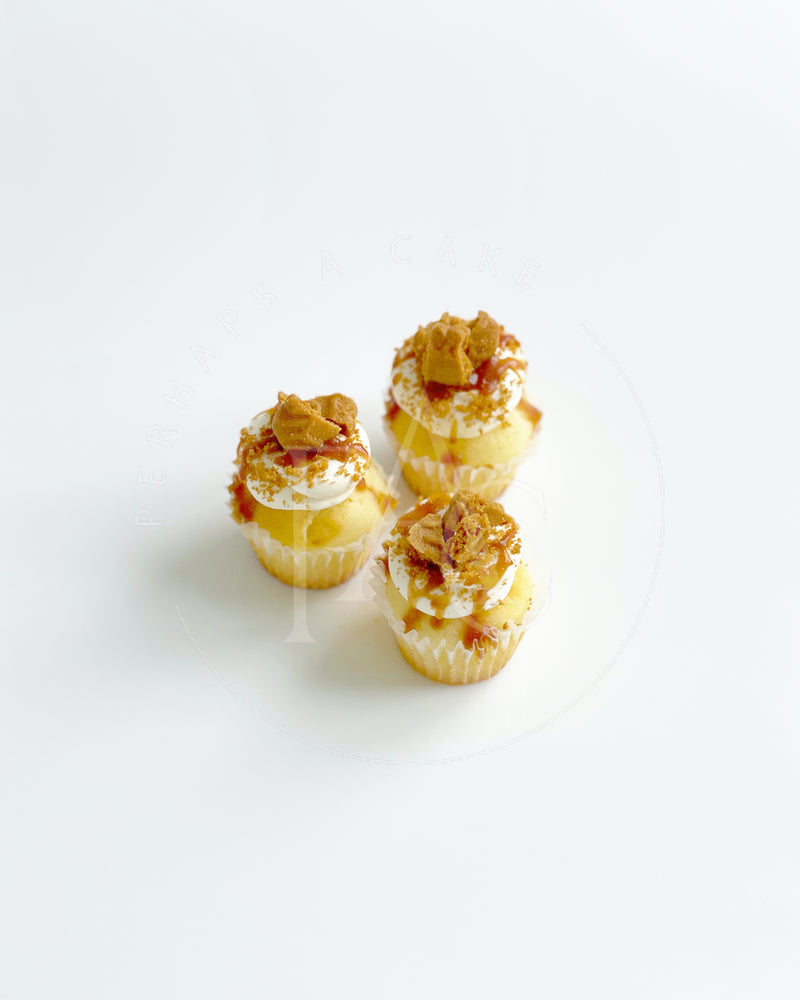 Perhaps A Cake - Mini Cupcake - Lotus Biscoff