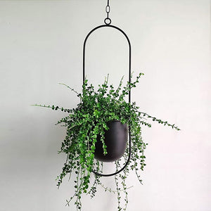 New Iron Hanging Flower Pot Garden Nursery Hanging Basket Swinging Flower Basket Wall Hanging Planter Pot Home Use plant hanger