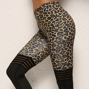 High Quality Leopard Print Workout Legging for Women - asheers4u