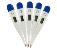 Oral-Axillary Digital Thermometer