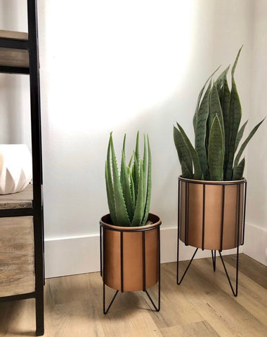 Copper Floor Planters