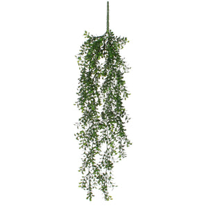 Boxwood Hanging Greenery - Bright Green