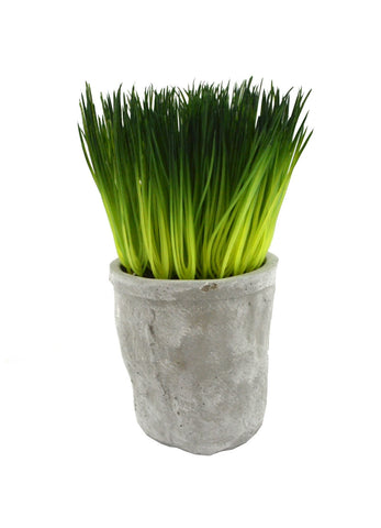 Faux Herb Grass
