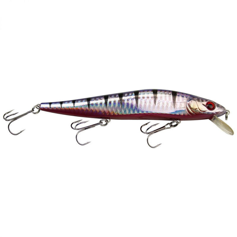 Suicide Flanker 13,5cm Purple Perch
