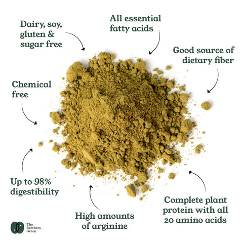 Benefits of NZ Hemp Protein Powder - The Brothers Green
