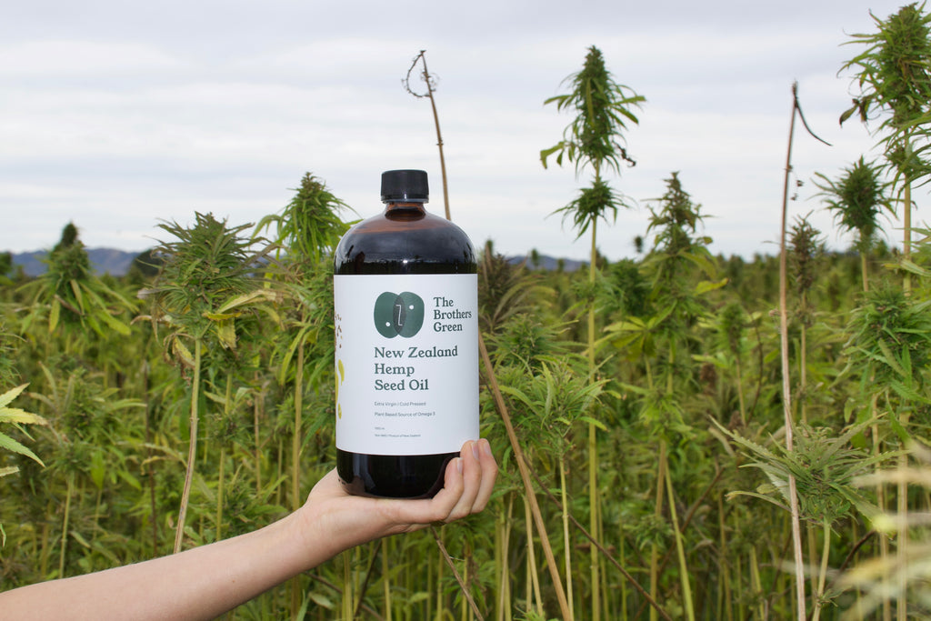 What is Hemp Seed Oil? The Brothers Green Blogs