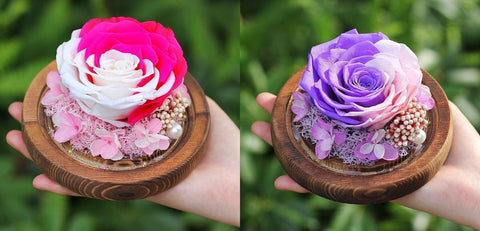 Preserved Rose In Glass Dome Wooden Base