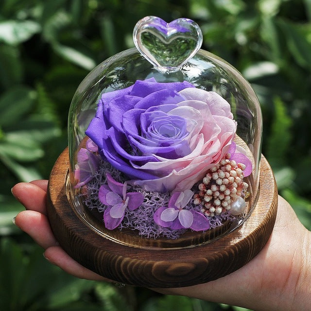Preserved Rose In Glass Dome Wooden Base - vishmall.com