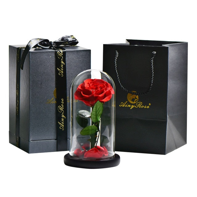 Beauty And The Beast Everlasting Rose - vishmall.com