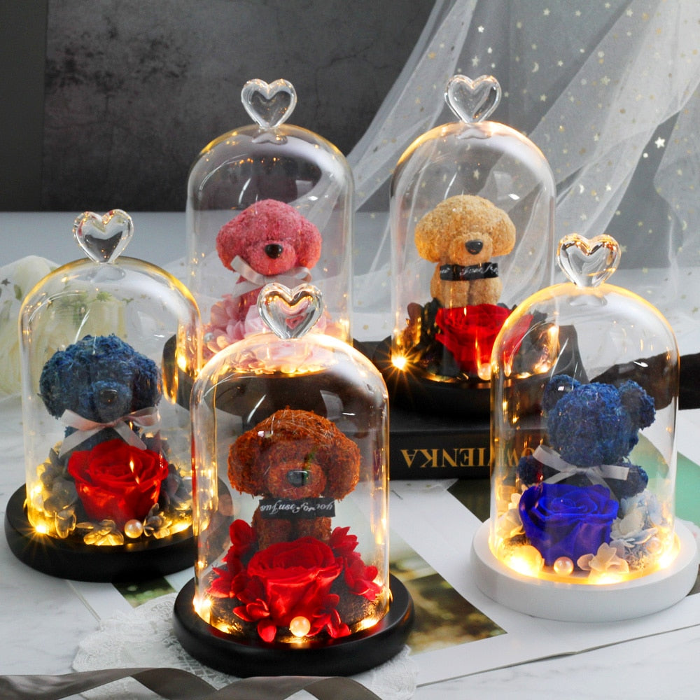 Dog Rose In Glass Dome With Lights - vishmall.com