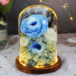 Preserved Flowers In Glass Dome - vishmall.com