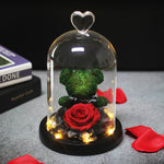 Rose Bear In Glass Dome With Lights - vishmall.com