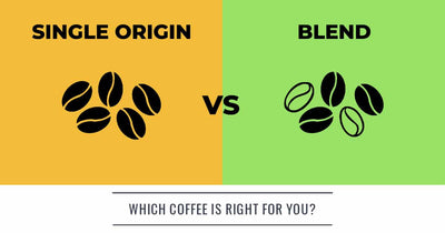 Finding Your Perfect Coffee