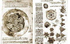 flower-of-life-leonardo-da-vinci-drawing