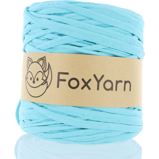 T-Shirt Yarn - Bashful Blue