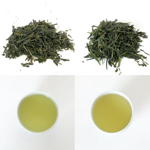 [Bundle] Light Steamed Sencha -  Okumidori & Tsuyuhikari cultivars